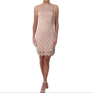 NWOT Aqua light pink, lace  Bodycon style Dress